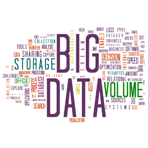 2012 Word of the Year: Big Data