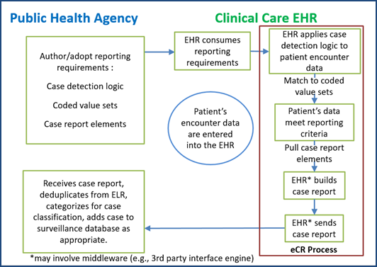 Interactions between the Public Health Agency and Clinical Care for eCR